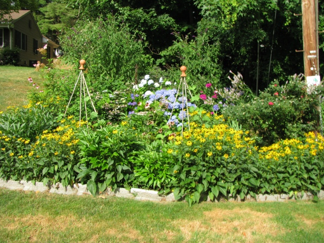 Habitat Garden in full bloom