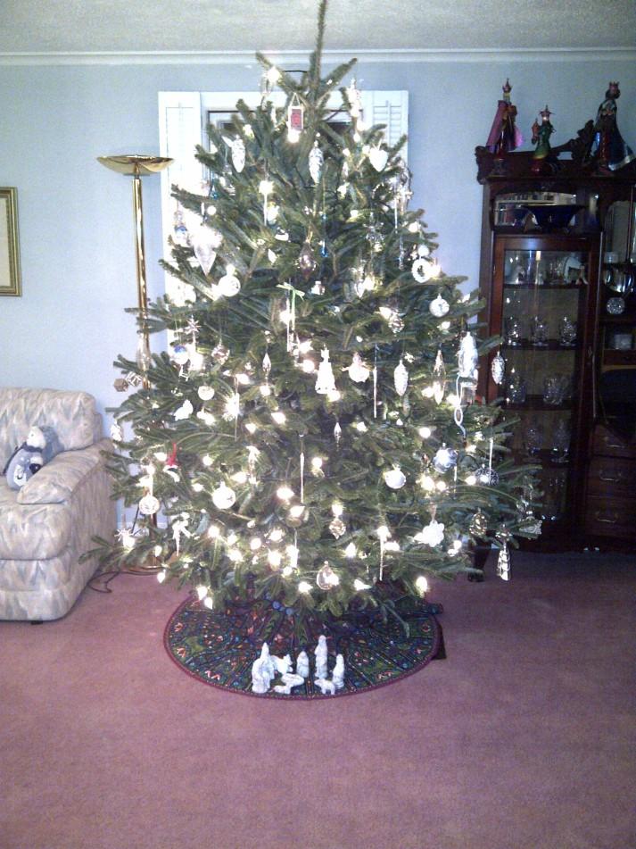 Prior year's Christmas tree