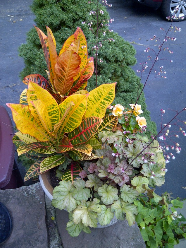 Autumn container--before
