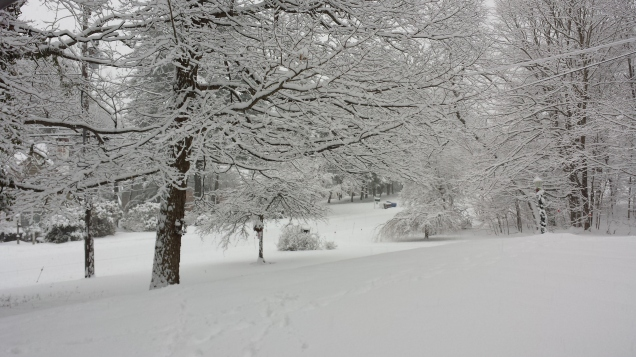 Saturday's Snow