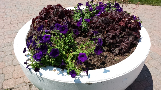 West Hartford Center Planter