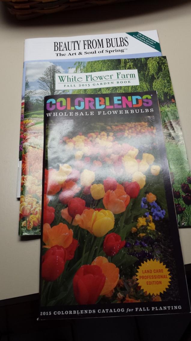 bulb catalogs