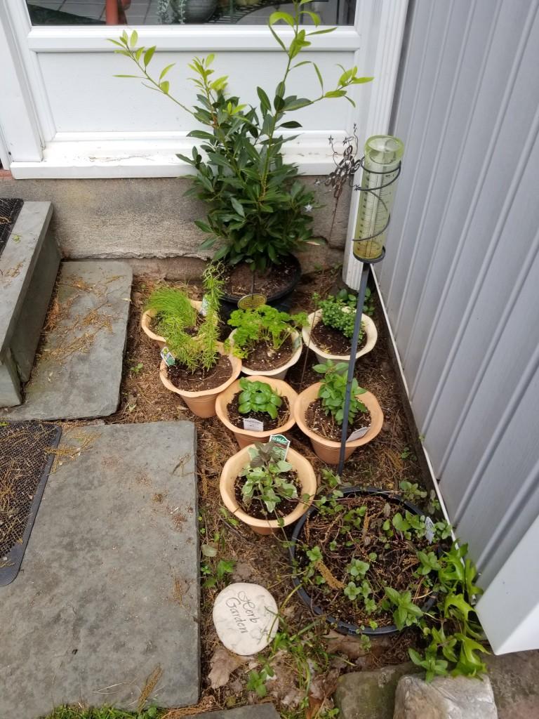 Door yard herb garden
